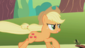 Applejack Hold on girls S01E10.png