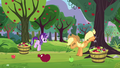 Applejack bucks apple tree; Starlight about to buck apple tree S5E26.png