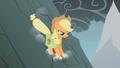 Applejack coming for Fluttershy S01E07.png