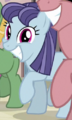 Blueberry Frosting Earth pony ID S5E1.png