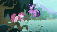 Fake Pinkie Pie -you call that a pop-!- S8E13