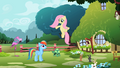 Fluttershy 'Somewhere in here...' S2E07.png
