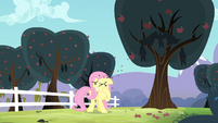 Fluttershy getting seeds spit at her S4E7