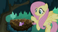 Fluttershy waves goodbye to the bird S8E13