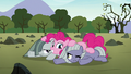 Pinkie, Limestone, and Marble in a Pie pile S8E3.png