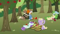 Ponies eating apples and hugging apple trees S7E14