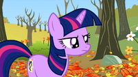 Twilight give stare S1E13