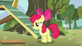 """Apple Bloom panicked """"you did?"""" S5E4.png"""