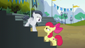 Apple Bloom stops Rumble on the stands S7E21.png