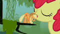 Applejack broke her head S01E09.png
