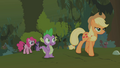 Applejack dismisses Pinkie Pie's and Spike's explosion theories S01E15.png