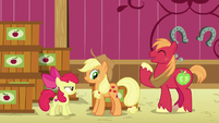 Applejack scrunches her face as Big Mac laughs S6E23