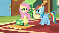 Fluttershy -I don't think he needs that- S5E5