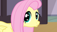 Fluttershy giving a sad pout S4E14