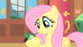 Fluttershy with Hummingway on arm S1E22.png