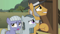 Pinkie Pie family hesitate S01E23.png