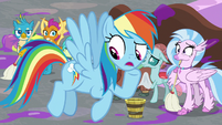 "Rainbow ""what are we gonna do exactly?"" S8E16"