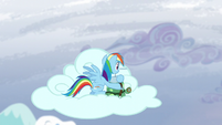 Rainbow and Tank sitting on a cloud S5E5