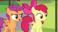 "Scootaloo ""find something he's good at"" S7E21"