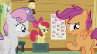 "Scootaloo replies ""No"" S5E18"