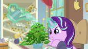 Starlight watering her office plant S9E20