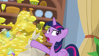 "Twilight ""bits and resort expansion plans!"" S8E16"