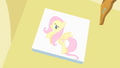 Fluttershy picture 2 S1E20.png