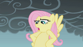 Fluttershy serious face S01E07.png