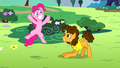 Pinkie Pie and Cheese super-happy S4E12.png