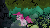 Pinkie Pie hears echoes S3E03