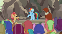 "Rainbow Dash ""I bet if she were here"" S7E18"