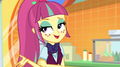"""Sour Sweet """"tell me more"""" EGS1.png"""