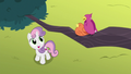 Sweetie Belle listens to chirping birds S8E6.png