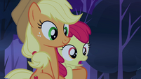 Apple Bloom being held by Applejack S3E06