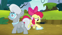 Apple Bloom feeling put down S5E4