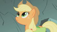 Applejack walking through avalanche zone S1E07