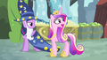 Cadance 'I think you can manage' S4E11.png