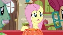 "Fluttershy ""not again!"" S6E11"