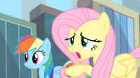 Fluttershy 'What if you find a Gloomy Gus' S4E08