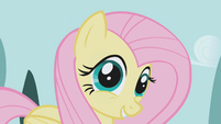 Fluttershy -I mean, yes- S1E03