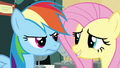 Fluttershy embarrassed S4E22.png