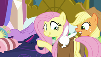 Fluttershy telling Angel to hug Twilight S8E2