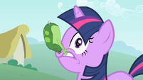 Frog on Twilight's face S1E15