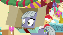Limestone with cardboard box on her head MLPBGE