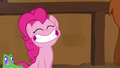Pinkie Pie grinning happily with the yaks S7E11.png