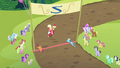 Ponies staring at Orchard Blossom S5E17.png