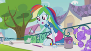 Rainbow Dash painting banner EG2