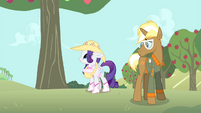 Rarity looks at apple tree S4E13