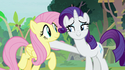 Rarity putting a hoof around Fluttershy S8E4