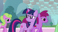 "Twilight ""where is Rainbow Dash"" S03E13"